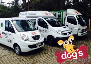 Transporte Canino